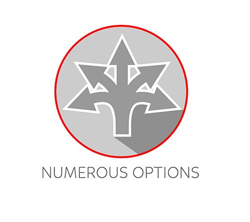 Numerous Options